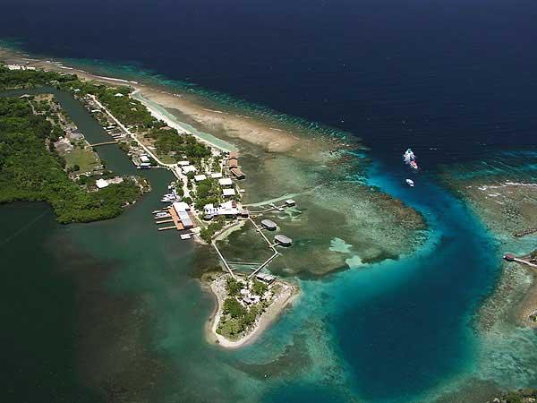 Coco view resort roatan honduras overwater bungalows for Roatan dive resort